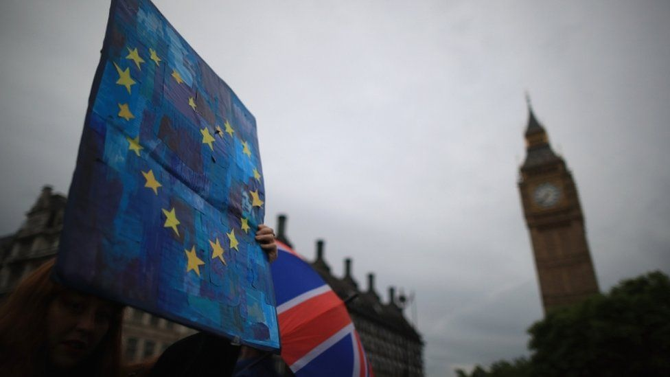 Protesters gather in front of the Houses of Parliament as they demonstrate against the EU referendum result on 28 June