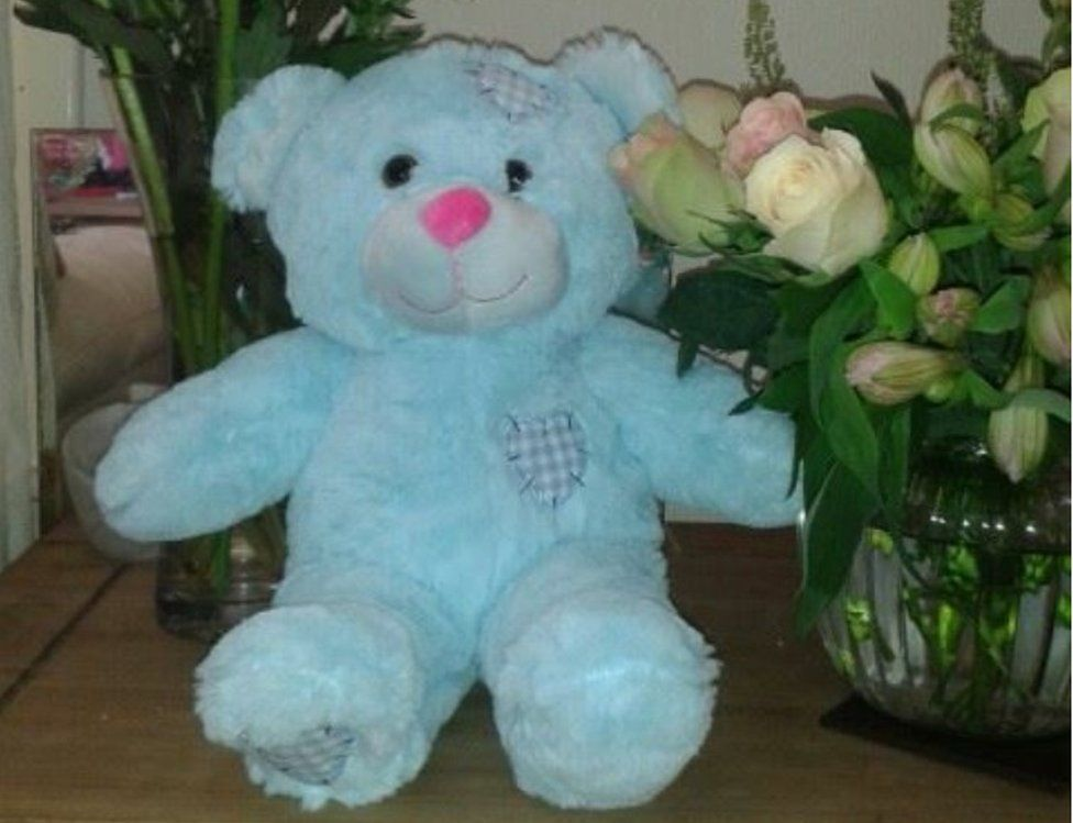 Teddy bear containing baby ashes
