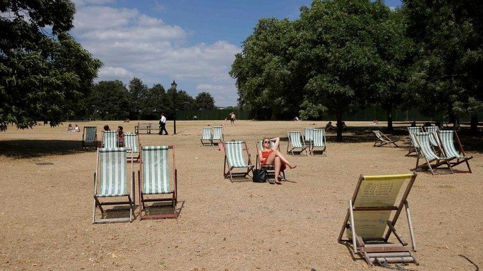 Deckchairs in park