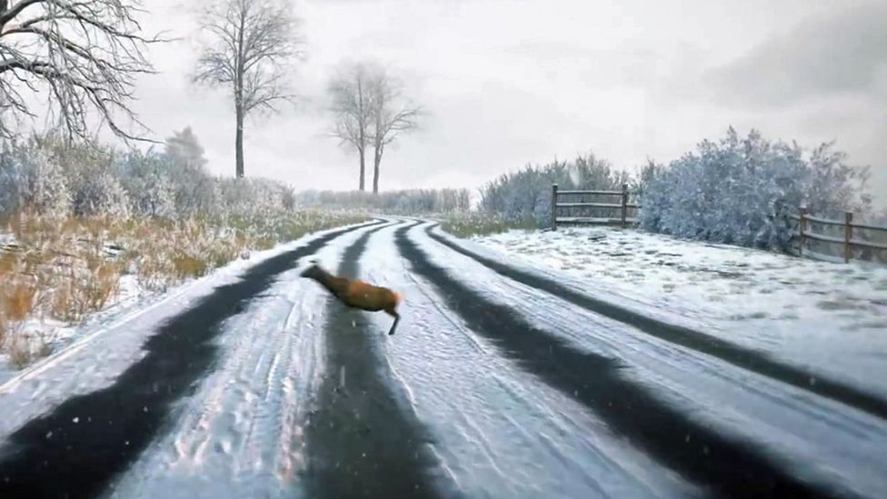 Clip showing deer on road in DVSA theory test