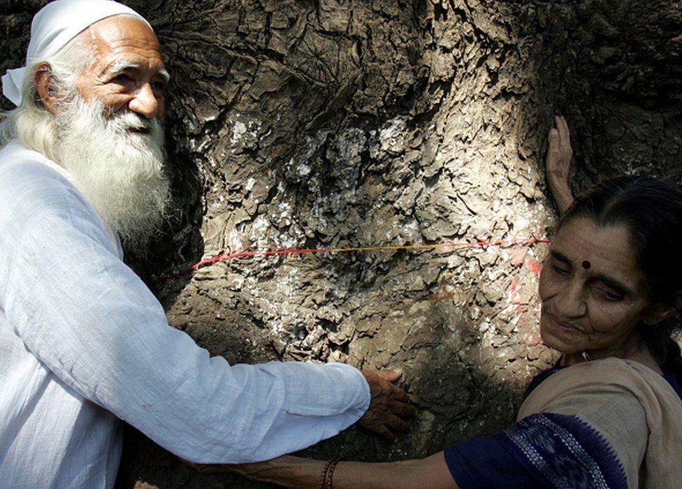 Sunderlal Bahuguna: The man who taught India to hug trees - BBC News