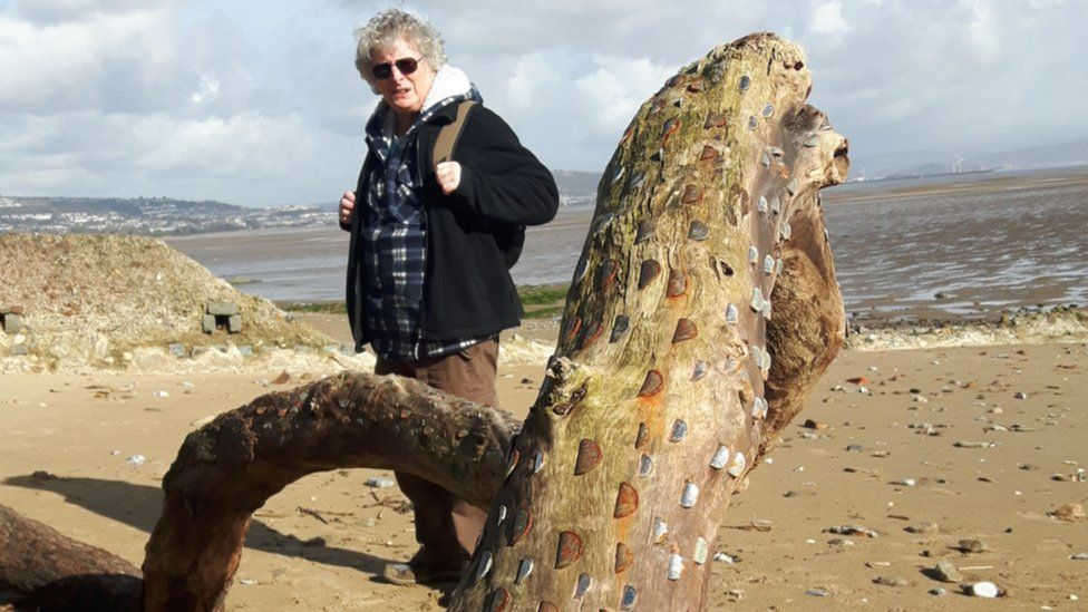 Rowli Rees with 'wishing tree' trunk