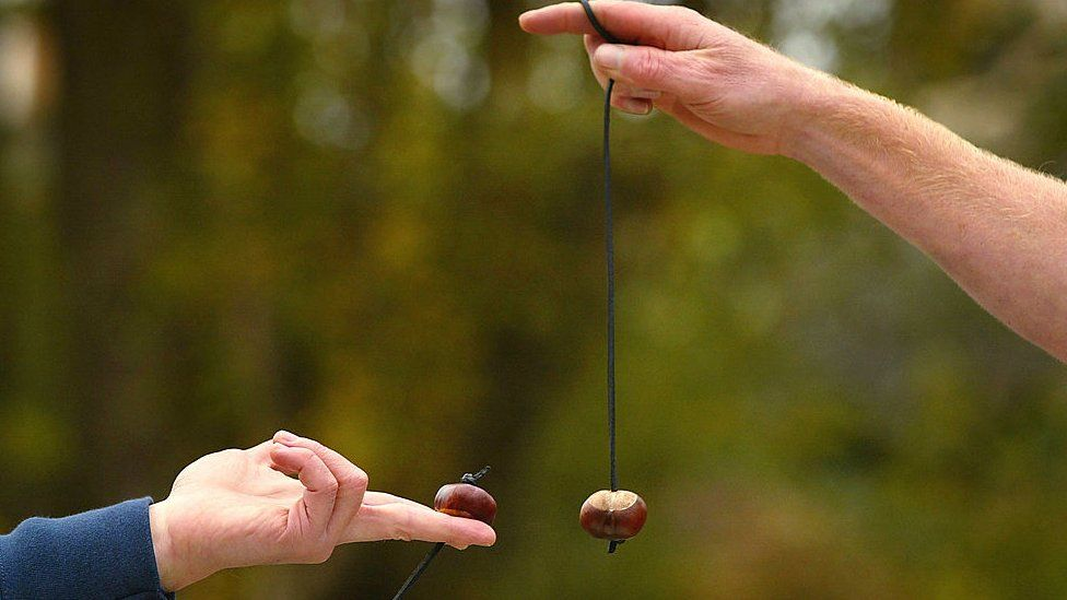 World conker championships in the UK