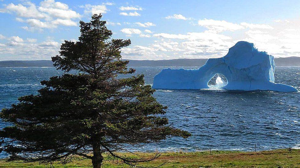 A small iceberg off the coast