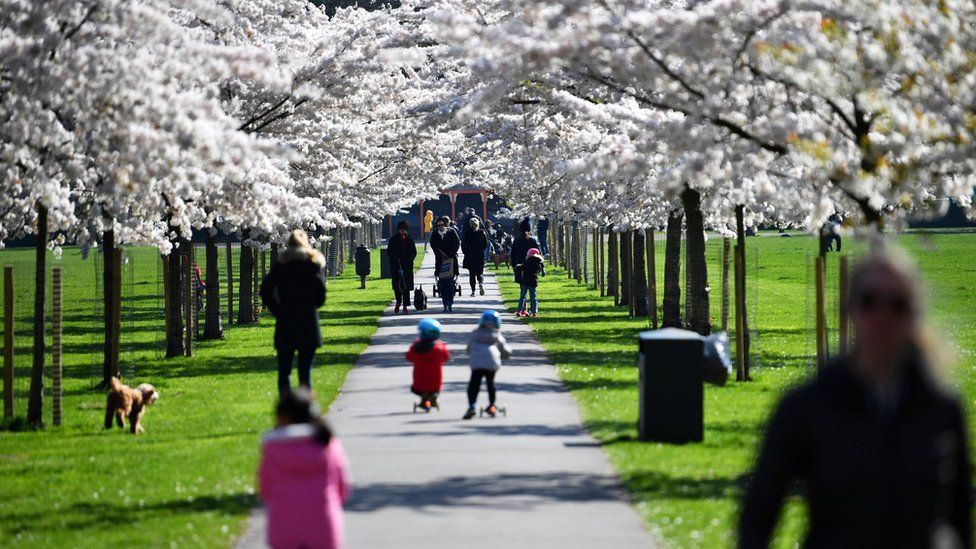 Families walk under cherry blossom trees in Battersea Park, as the number of coronavirus disease (COVID-19) cases grow around the world, in London, Britain March 22, 2020