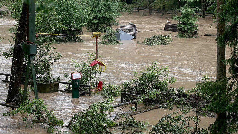 A flooded area at the zoo in Lünebach on June 1, 2018