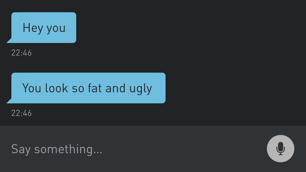 """A message on Grindr that says """"you look so fat and ugly"""""""