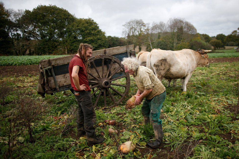 Jean-Bernard with a man next to a cart and oxen