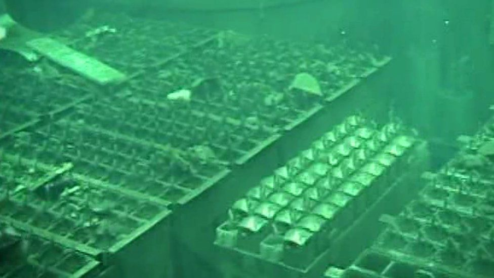 Fuel pool of the unit four reactor building at Fukushima Daiichi nuclear power plant