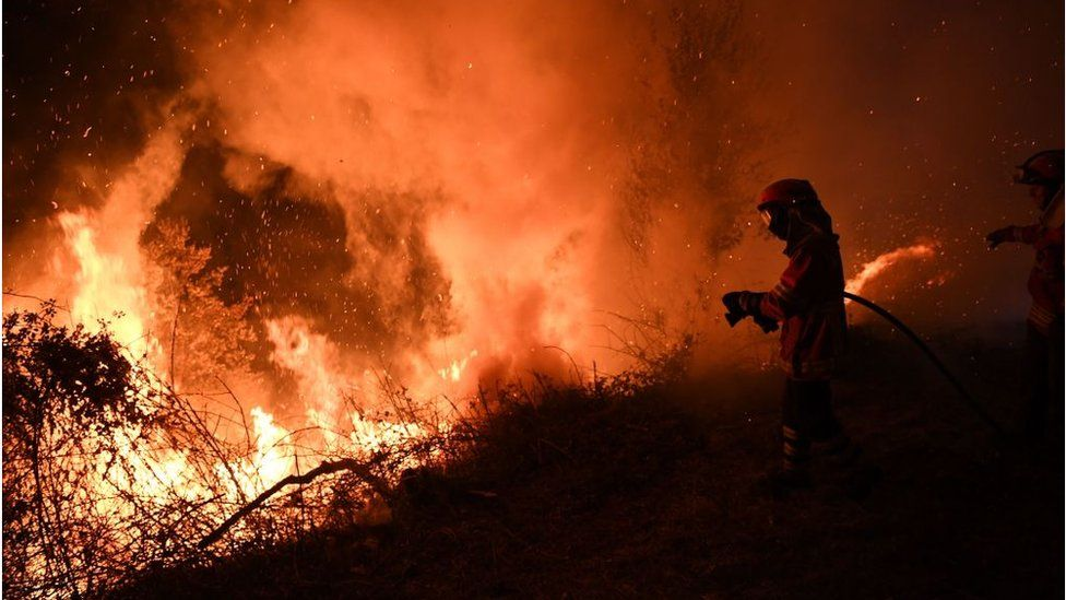 Лесные пожары в Испании и Португалии унесли десятки жизней