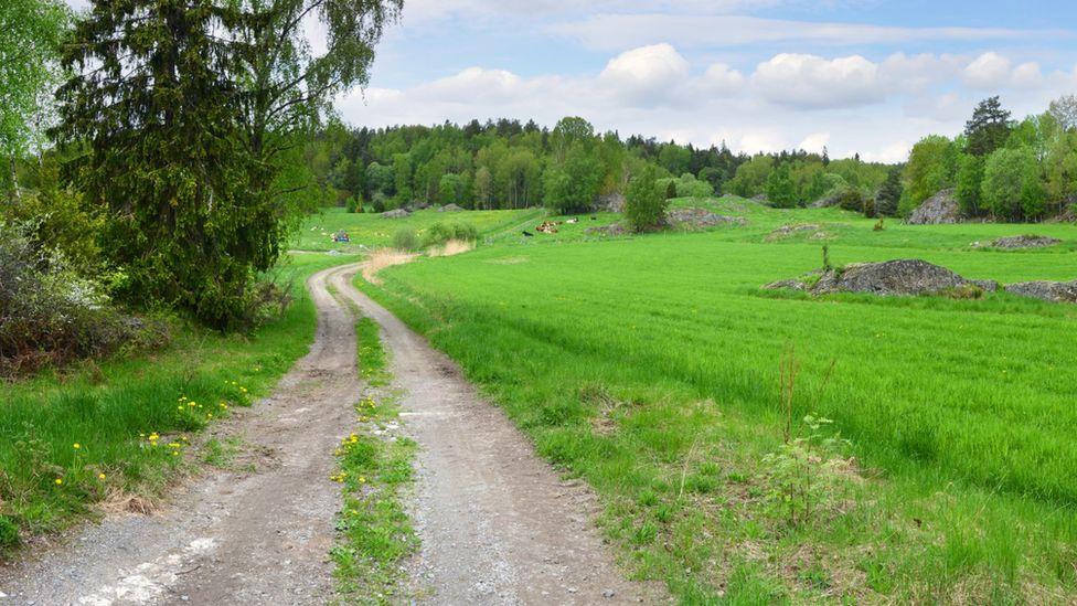 A country walk in Huddinge, Sweden