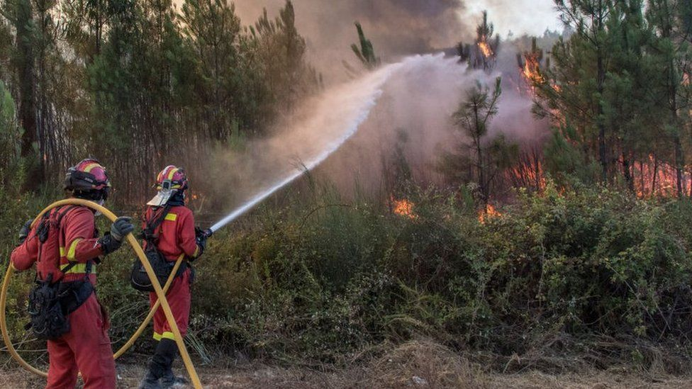 Spanish firefighters combat a forest fire in Portugal in 2017