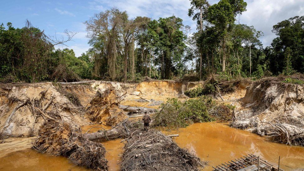 A large illegal mining site discovered by French forces shows deforestation in French Guiana