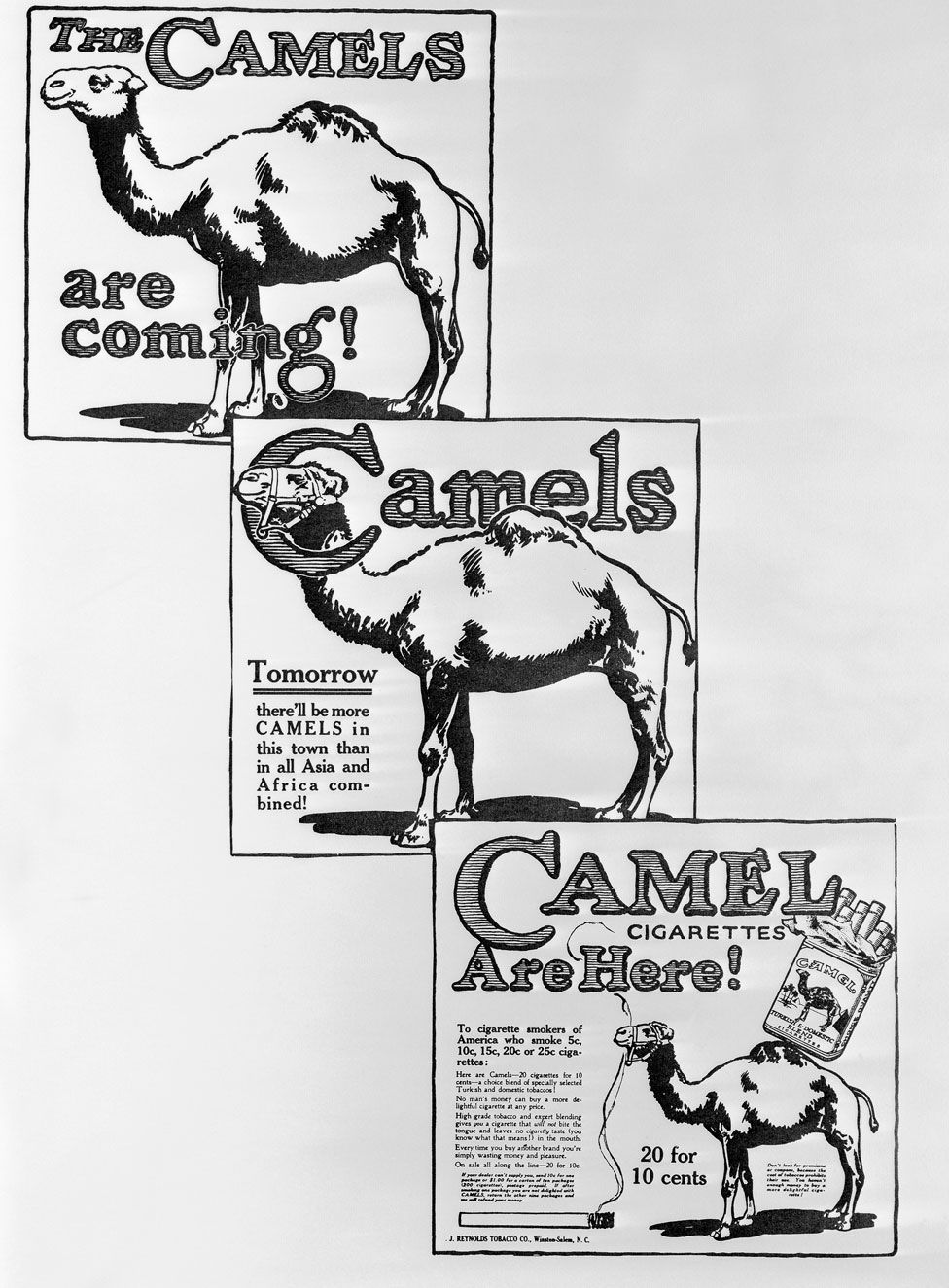 A series of adverts for Camel cigarettes