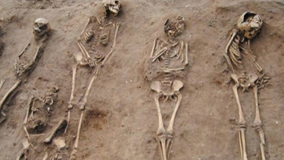 Skeletons at Thornton Abbey