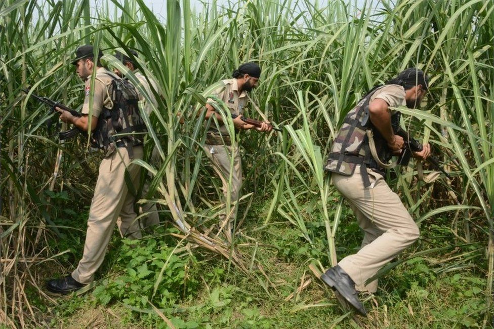 Indian Punjab policemen take part in search operations in a sugar cane field near the Indian-Pakistan border Chakri post, about 20km from Gurdaspur, on October 3, 2016.