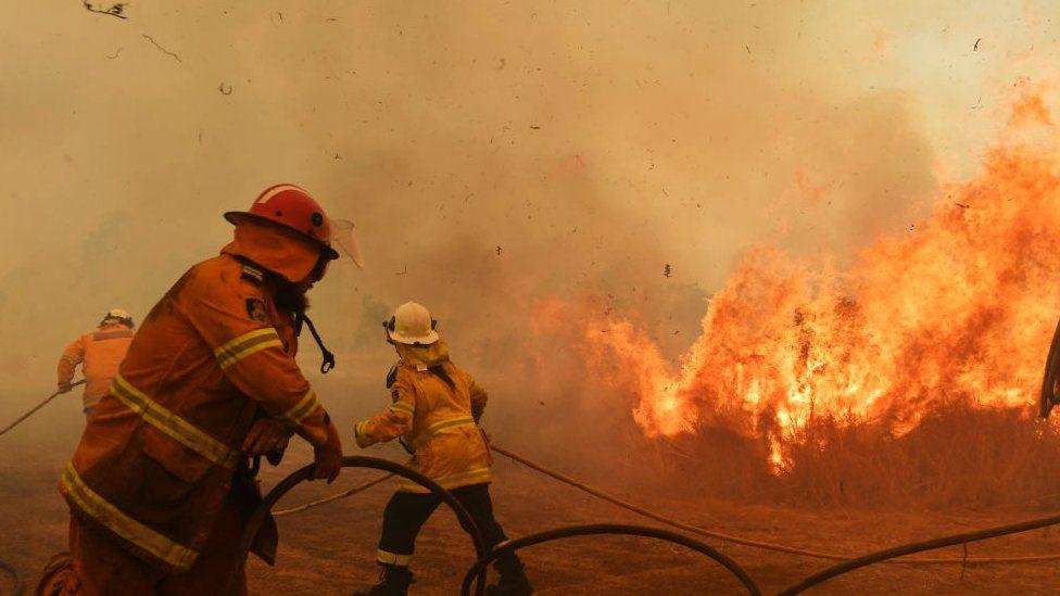 RFS Firefighters battle a spot fire on November 13, 2019 in Hillville, Australia.