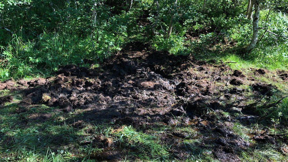 Peat bog resting place of the Spitfire