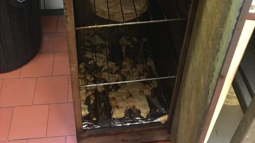 Cockroaches among the popadoms