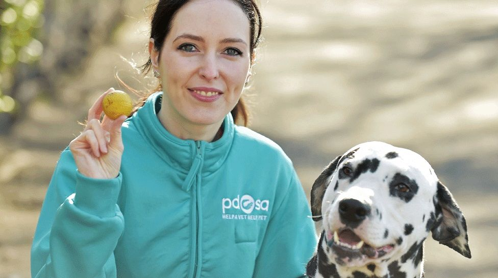 Vet Gemma Hepner with Pongo and the golf ball that was removed from his stomach