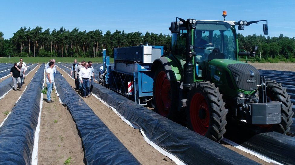 Asparagus picking robot pulled by tractor in a field