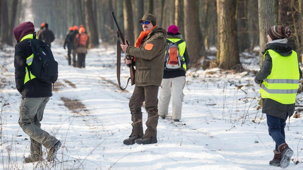 A hunter with his rifle looks on as animal rights activists dressed in high-visibility yellow vests walk around him on every side.