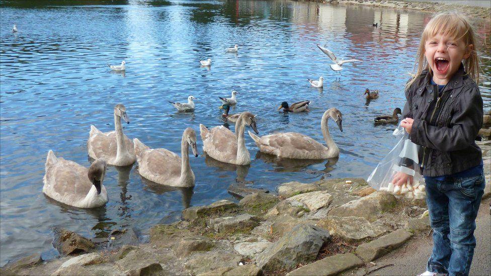 Alix Gray feeding swans