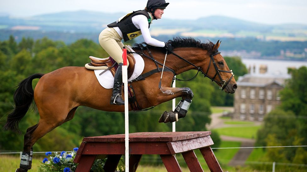 Horse and rider make a jump during a horse trial