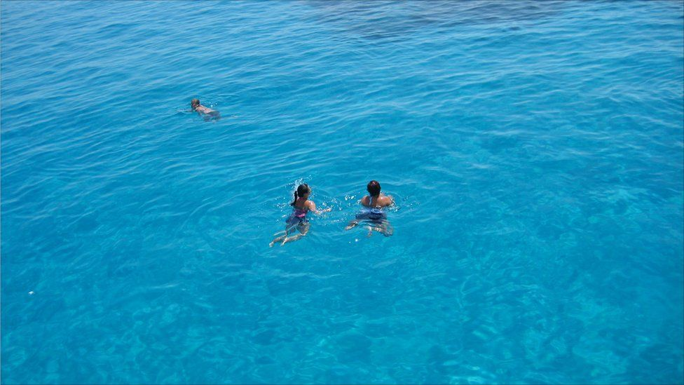 People swimming in the waters of a clear blue sea