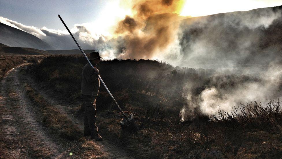 Man watching heather burning