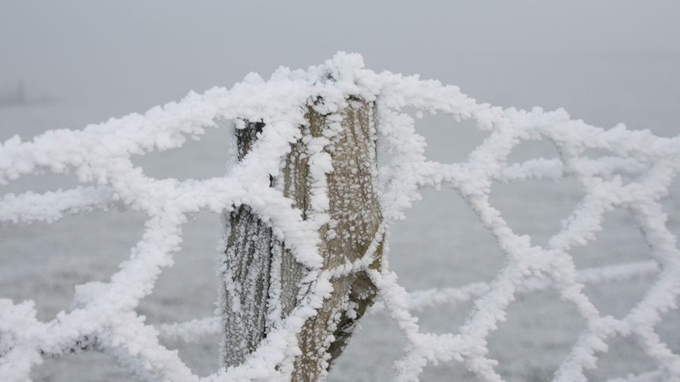 Fence and post covered in frost