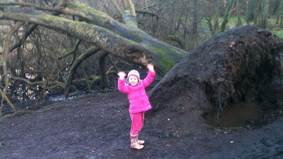 Girl standing beside a fallen tree