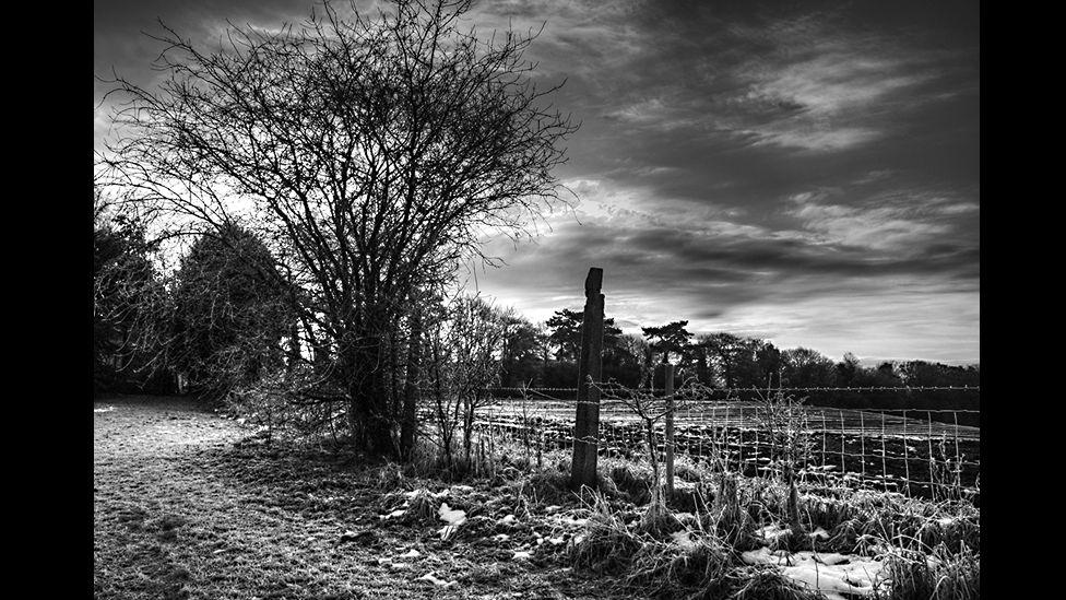 A Winter's Tale by Emily Borrett