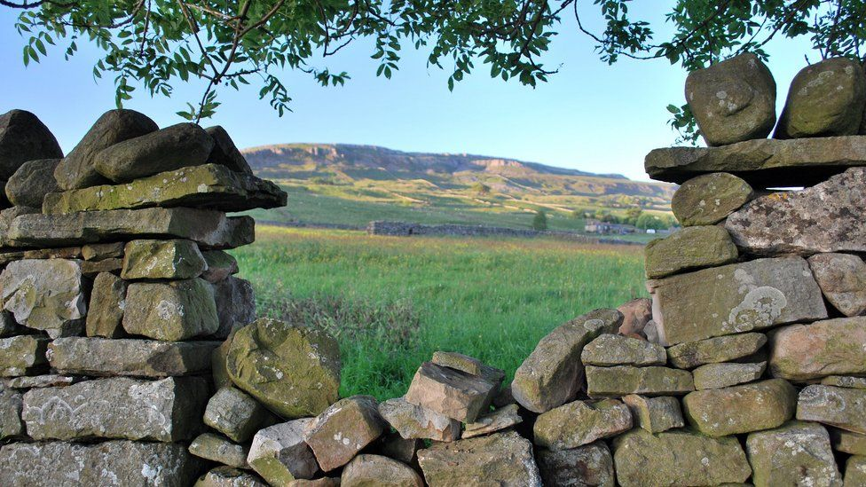 Dry stonewall in the Yorkshire Dales, England