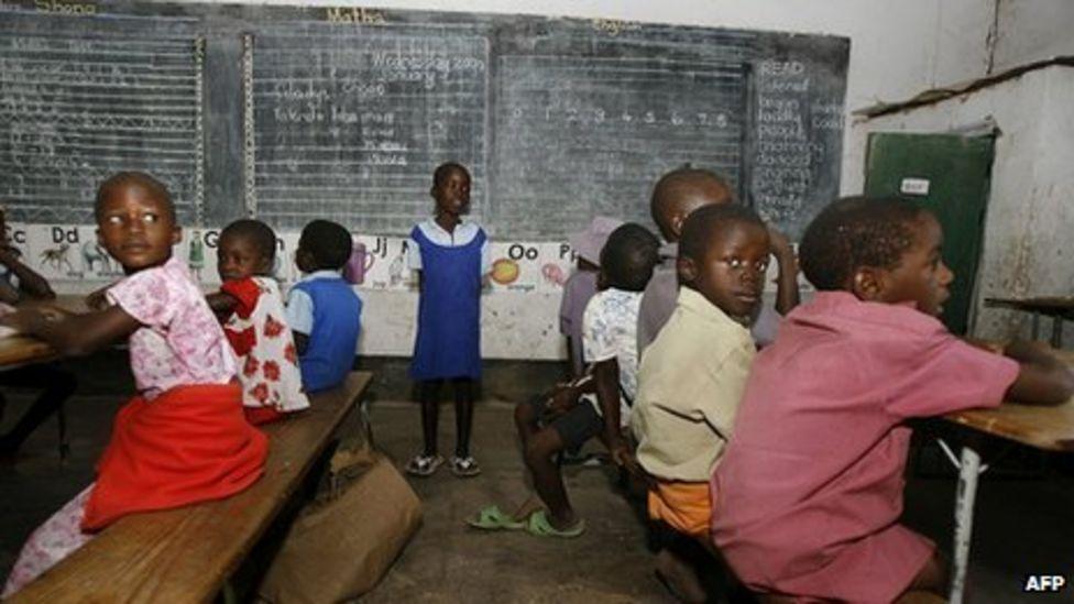 BBC News - Zimbabwes David Coltart: 18% pass rate is progress