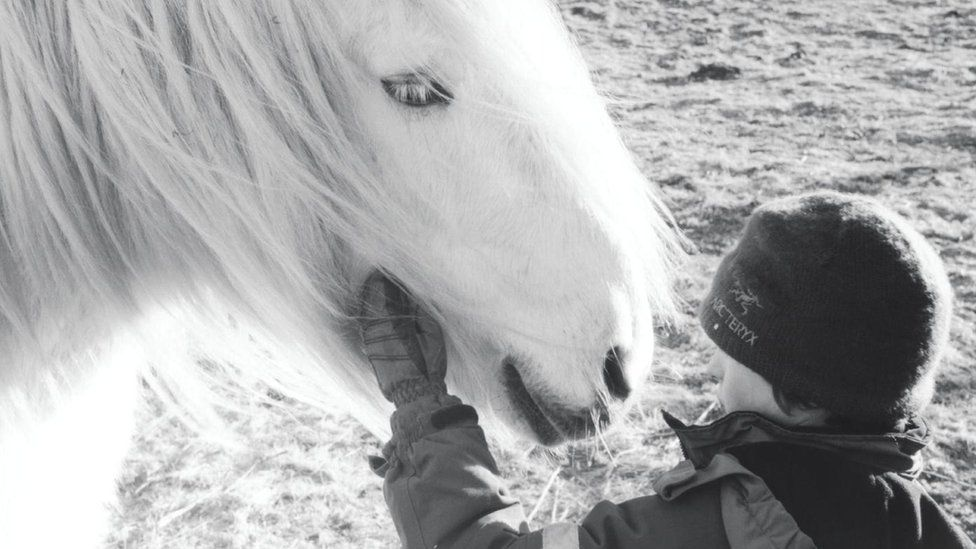 Alfie agus Tom
