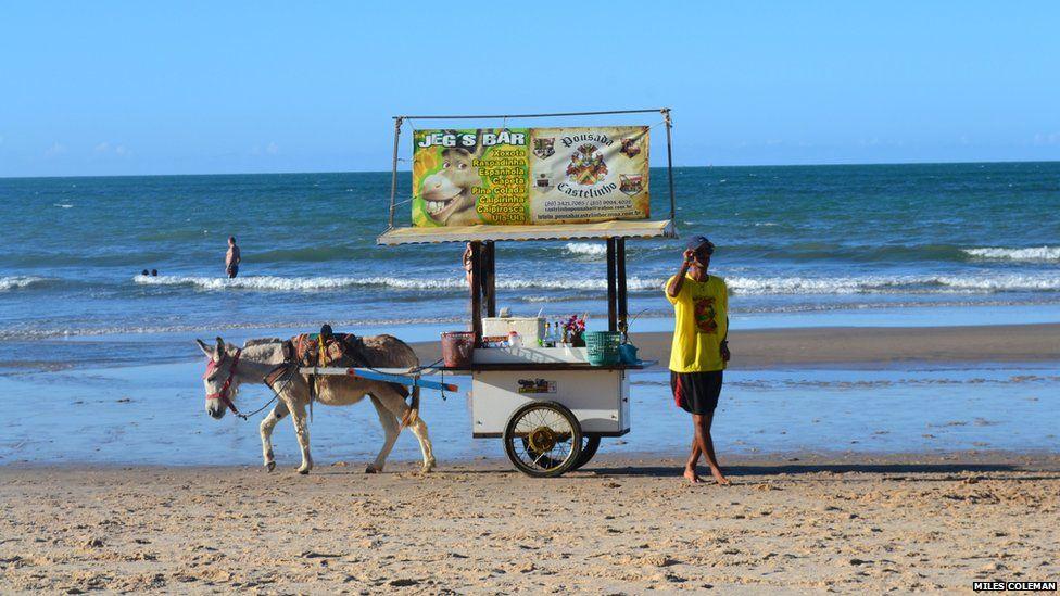 A donkey-powered bar