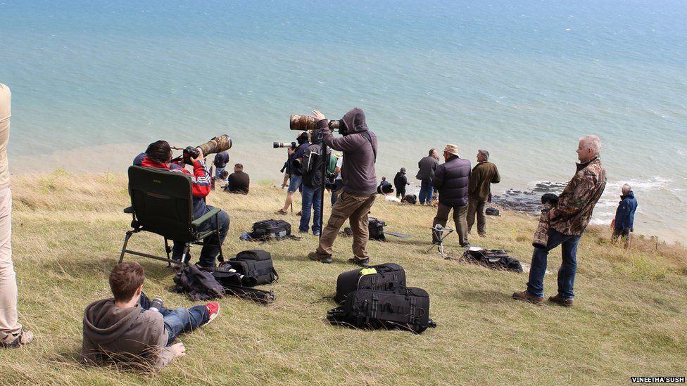 Photographers at Beachy Head