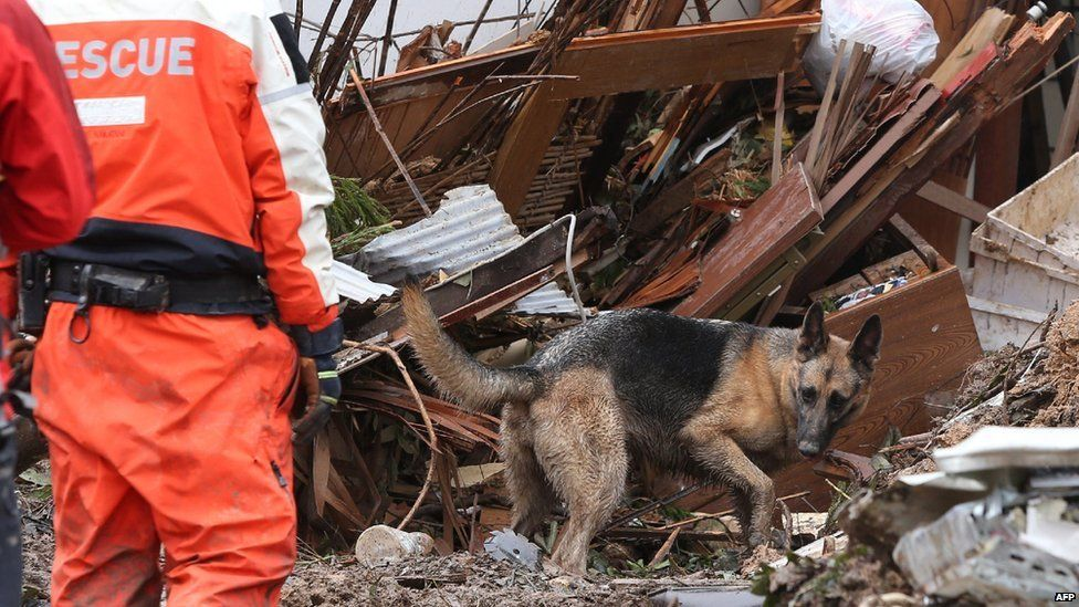 A dog and rescue workers search victims in collapsed house two days after a landslide hit a residential area in Hiroshima, western Japan on late August 22, 2014