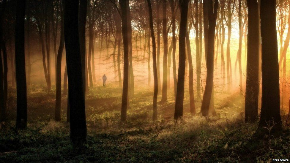 Woodcote, Oxfordshire