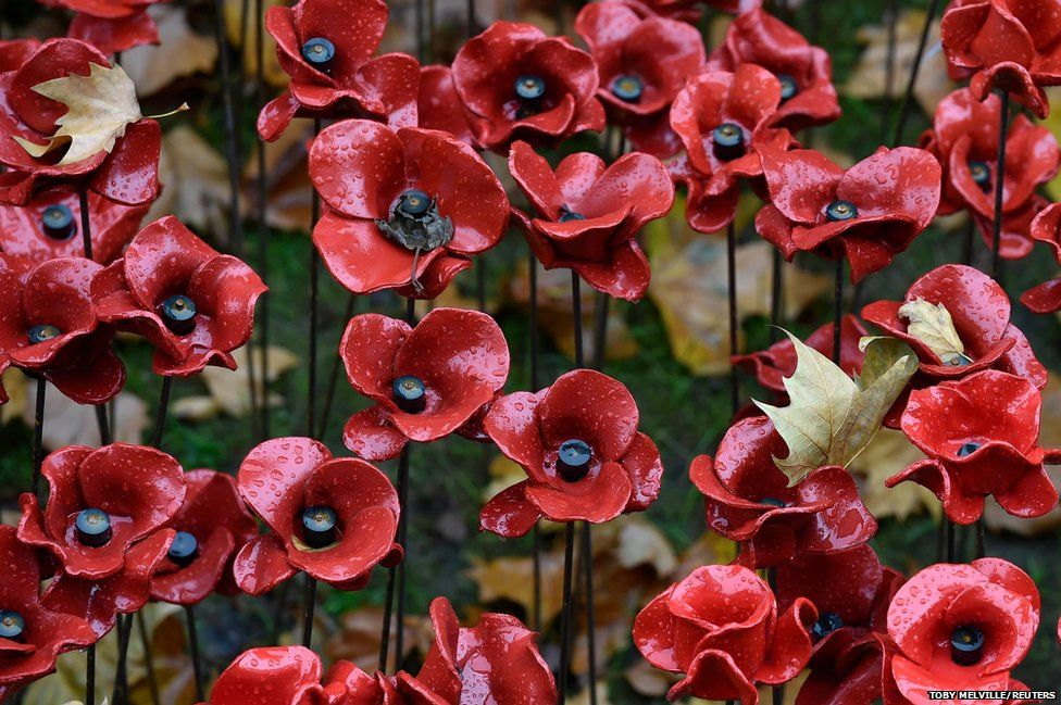 Fallen leaves are seen on ceramic poppies