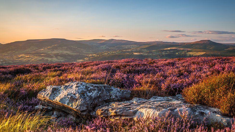 Y Mynydd Du yn llawn lliw // There's plenty of colour to be seen on the Black Mountains