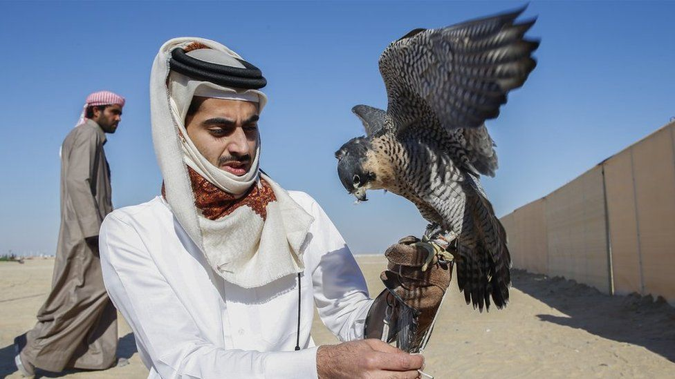 A Doha falconer and his bird