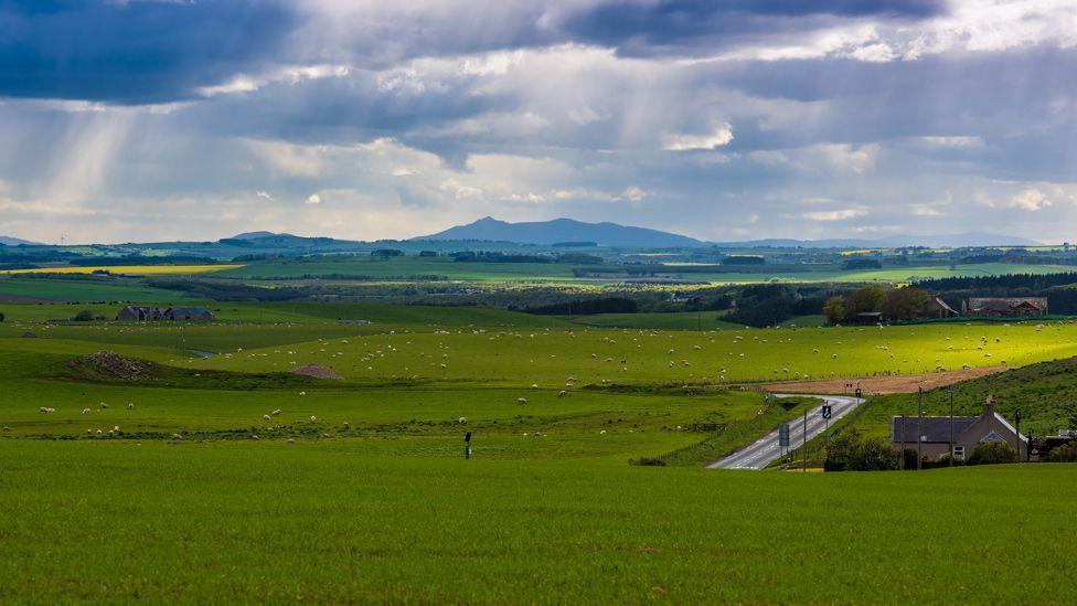 Buchan farmland