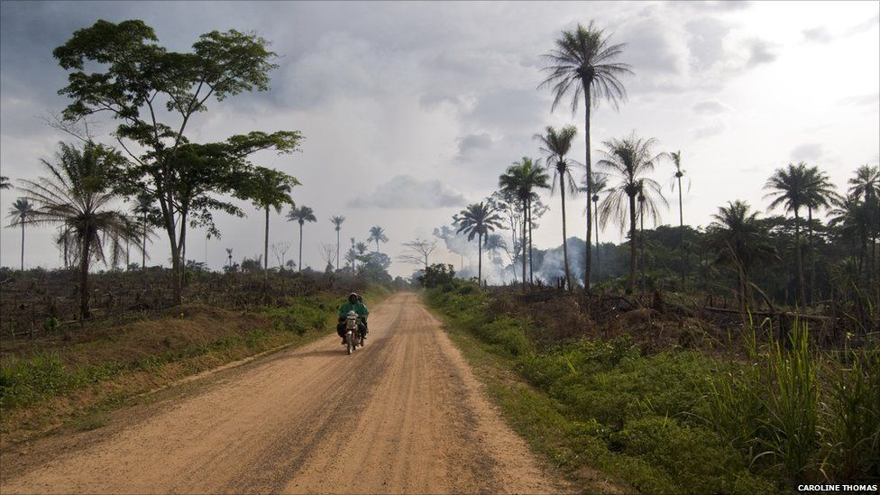 A motorcycle passes fields being burnt in preparation for cultivation, Kailahun