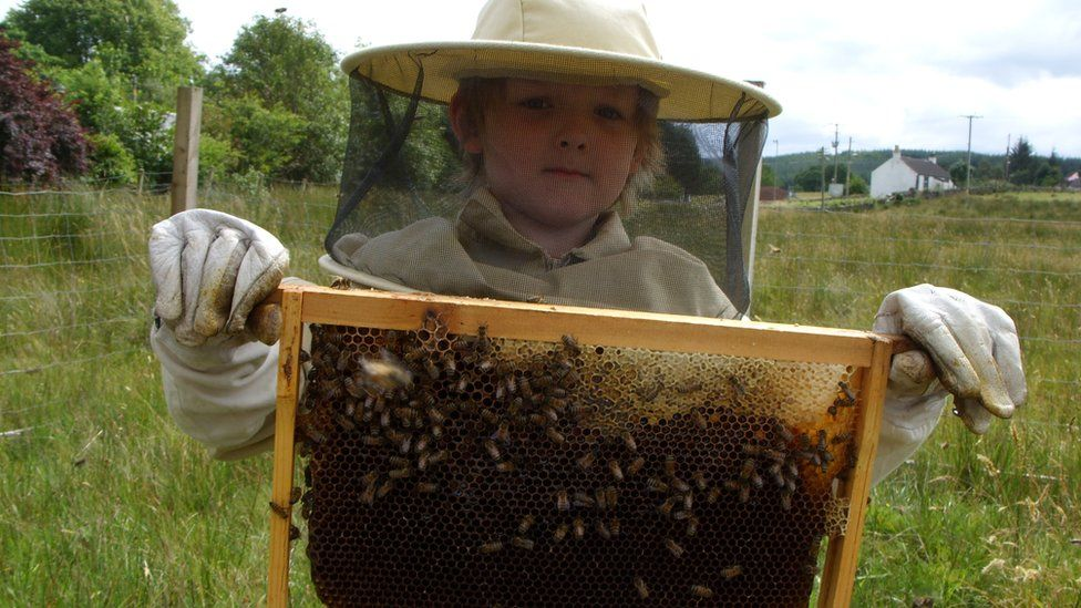 Leon holding a honeycomb of bees