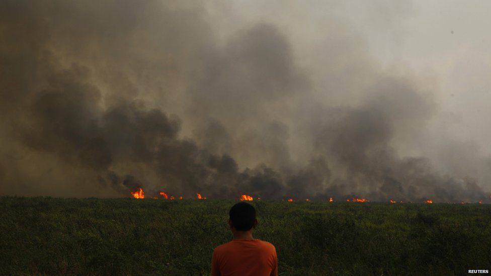 A villager looks at a burning palm oil plantation from Bangko Pusako, Riau province, June 22
