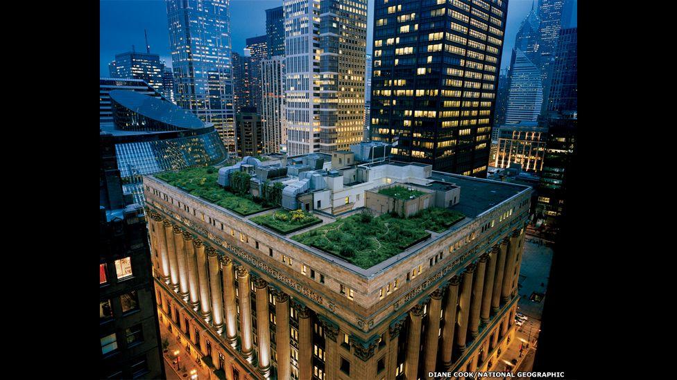Chicago City Hall's award-winning rooftop