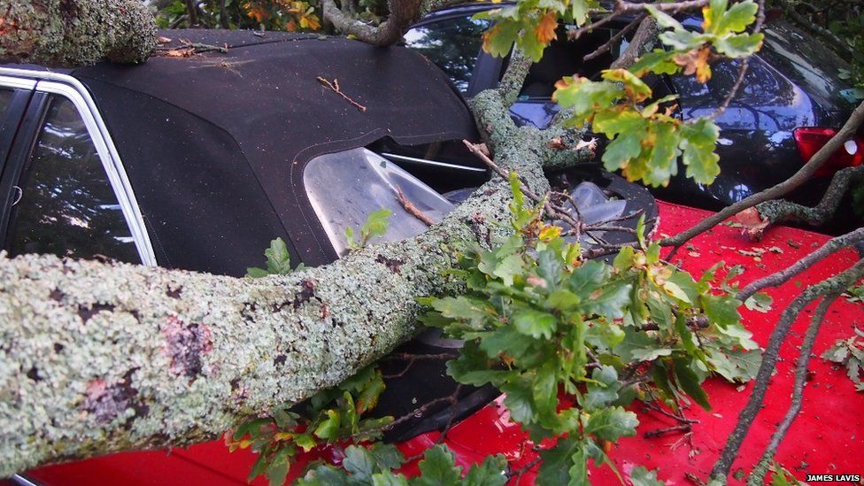 A branch on a car in Christchuch