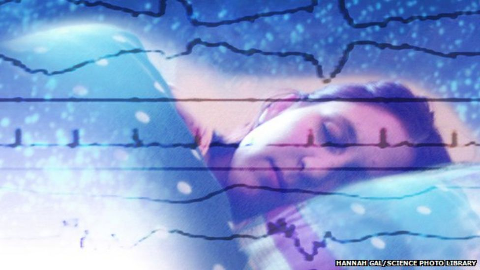 Brain 'can classify words during sleep'